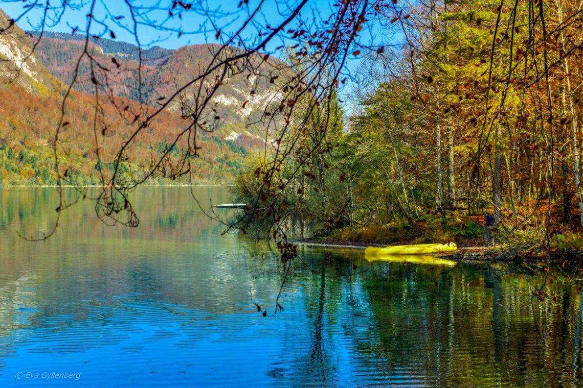 Gul kanot vid Lake Bohinj - Slovenien
