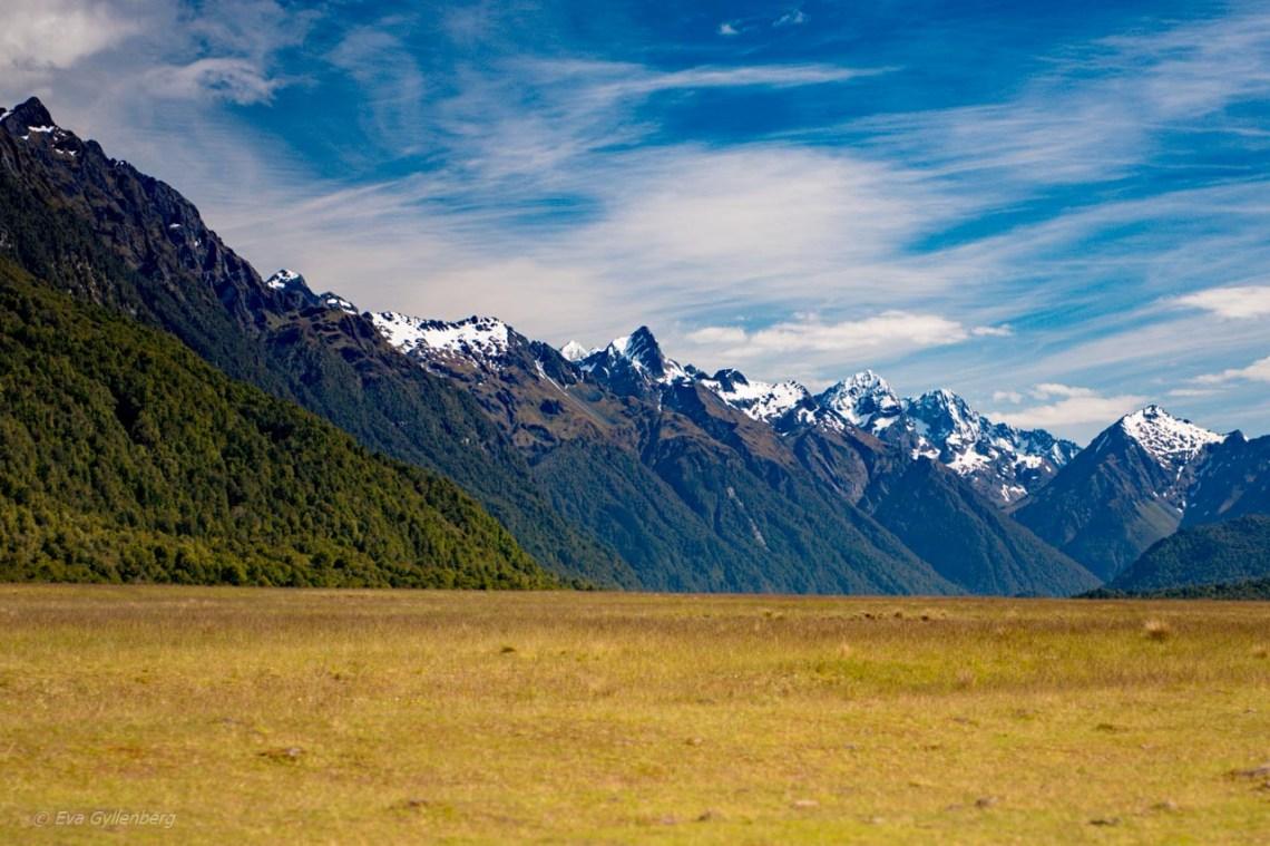 Snöklädda berg på vägen till Milford Sound