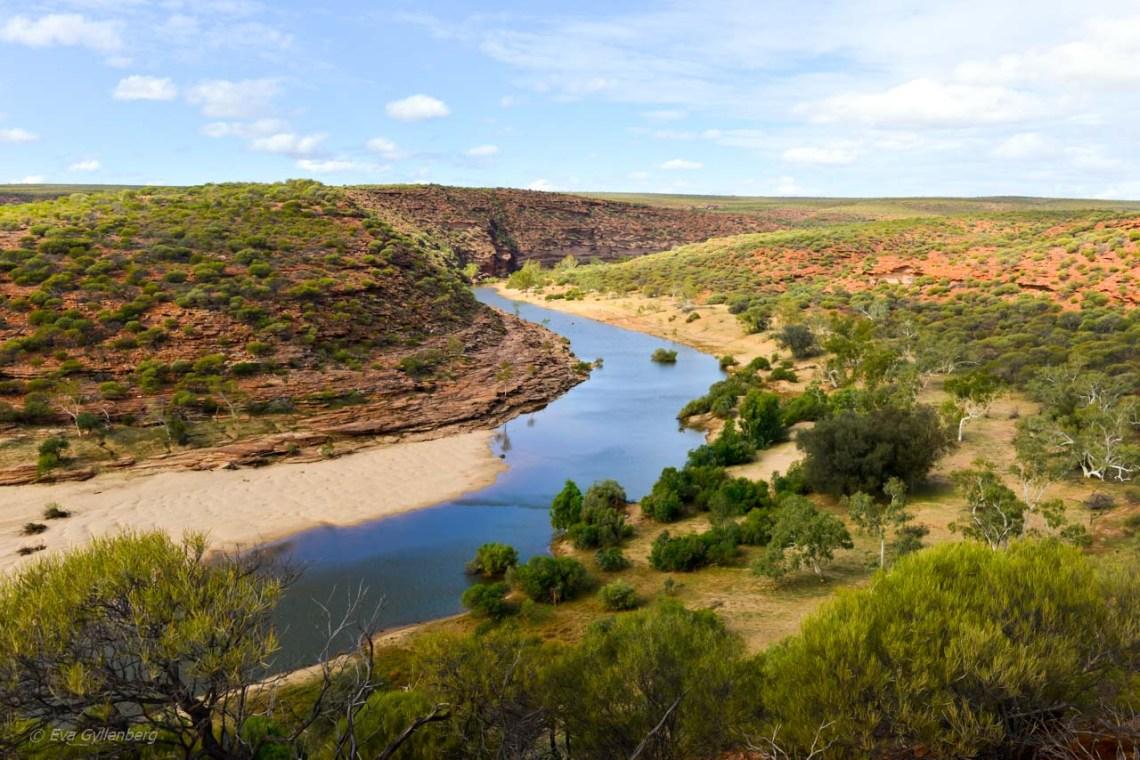 Murchison River utsikt