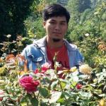 rudi roses