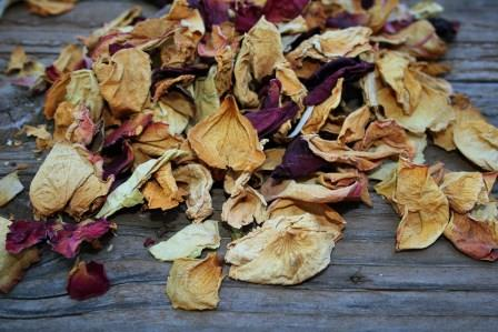 How To Preserve Rose Petals Preserved Roses