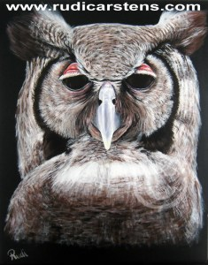 Acrylic painting of owl by Rudi Carstens