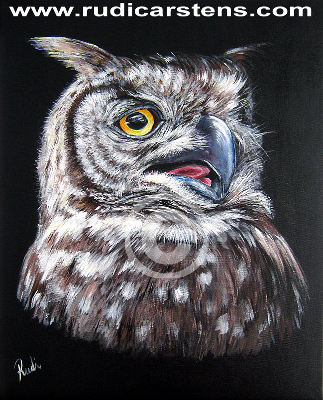 Acrylic Painting of Owl on Canvas