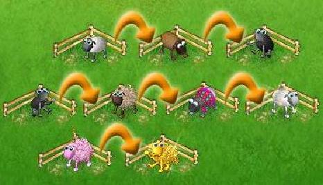 Bildliche Darstellung der Farmerama Schafzucht