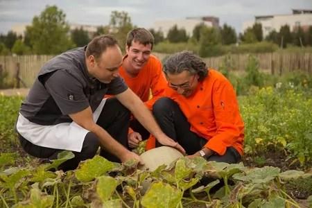 De la graine au potager puis à l'assiette : comment les variétés anciennes lyonnaises reprennent racine