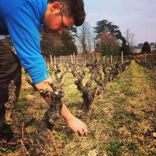 Yann Bertrand, vigneron dans le Beaujolais. Crédit : BP.