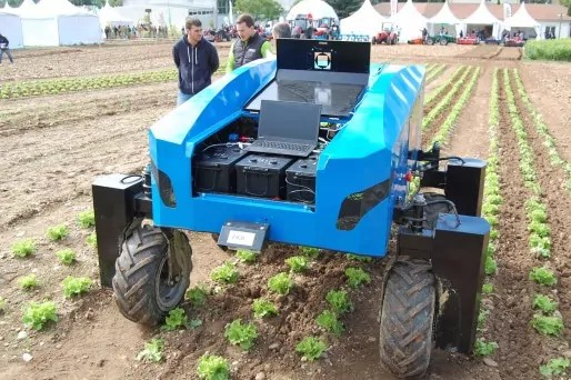 Robot Anatis, développé par Naïo et Carré, permettant de désherber des cultures en planches, ici des salades, au salon Tech&Bio / Photo BE pour Rue89Lyon