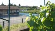 L'école de Viré a été construite au milieu des vignes qui jouxtent notamment la cour d'école. ©LB/Rue89Lyon