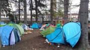 Une partie des tentes du square jugan le 13 janvier, sous les pins. Le campement avait été démantelé une première fois le mardi 18 janvier, après la mise à l'abri dans un gymnase des occupants. ©LB/Rue89Lyon