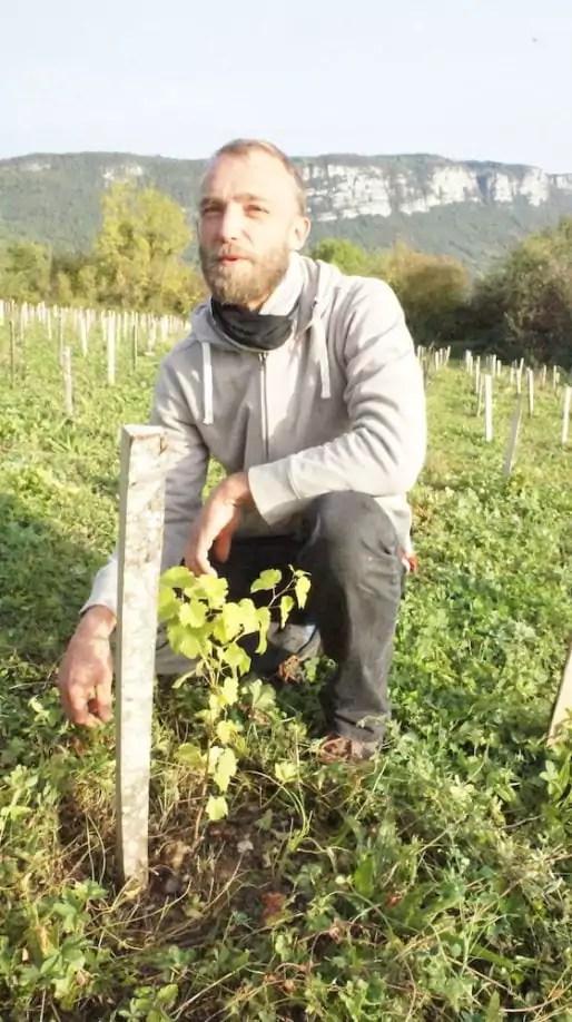 Sébastien Bénard devant un plant de Servanin planté en 2016 à La Buisse. ©LB/Rue89Lyon