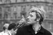 Johnny Hallyday avec un pigeon sur l'épaule à Londres à l'occasion du Royal Variety Performance - 1965 © Copyright : DR