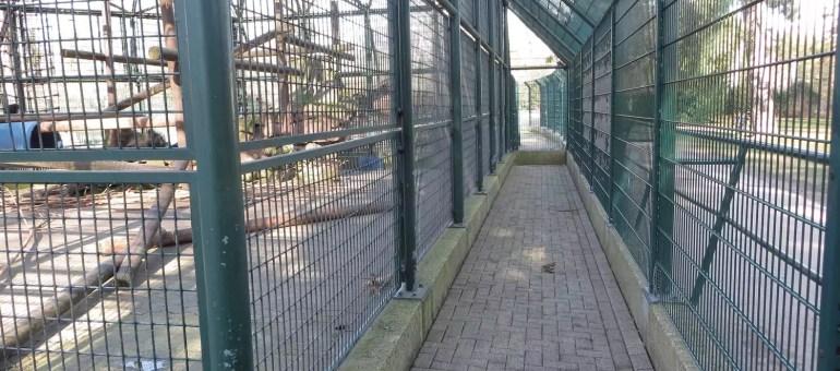 Orangerie : la Ville planche sur un après-zoo