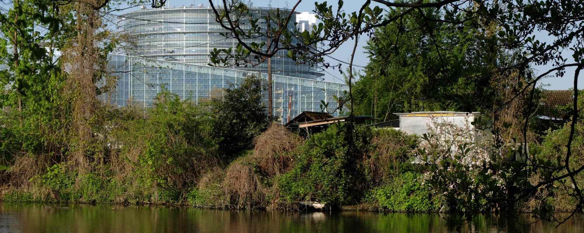 Balade nature à Strasbourg : la Robertsau, du Doernel à Pourtalès