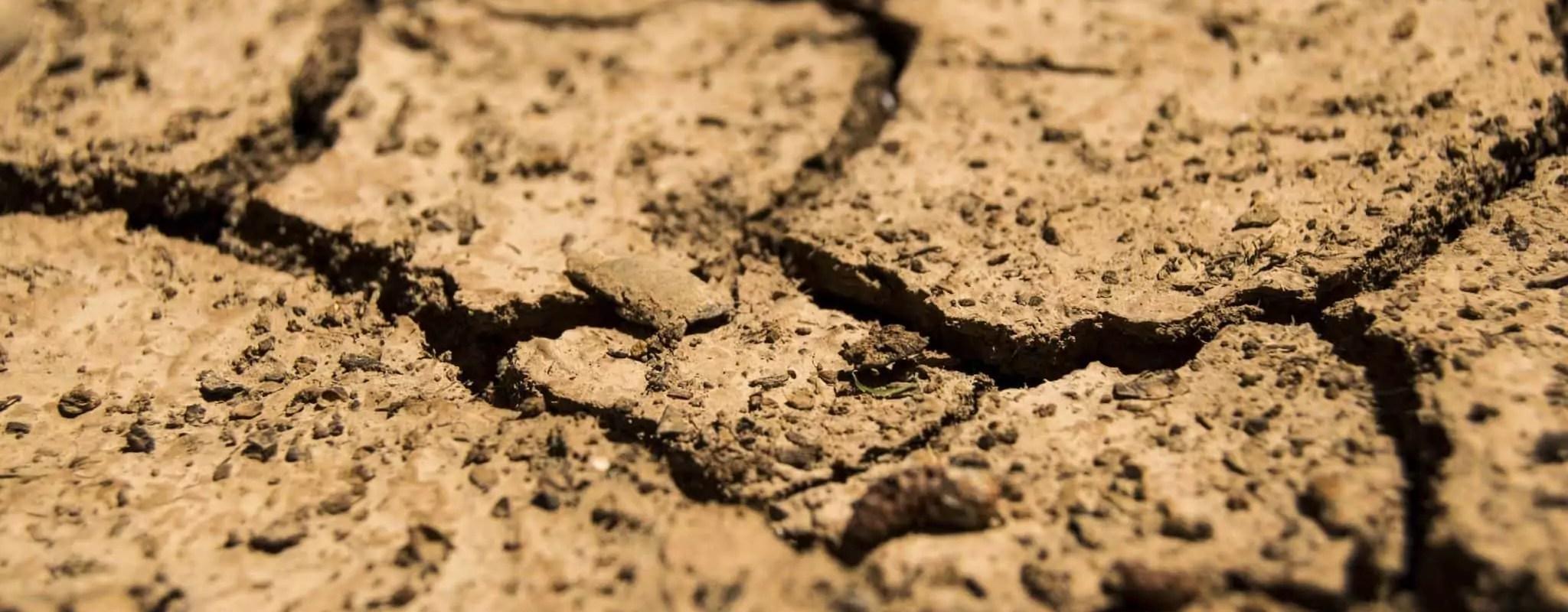 Sécheresse de 2018: 19 communes du Bas-Rhin en catastrophe naturelle