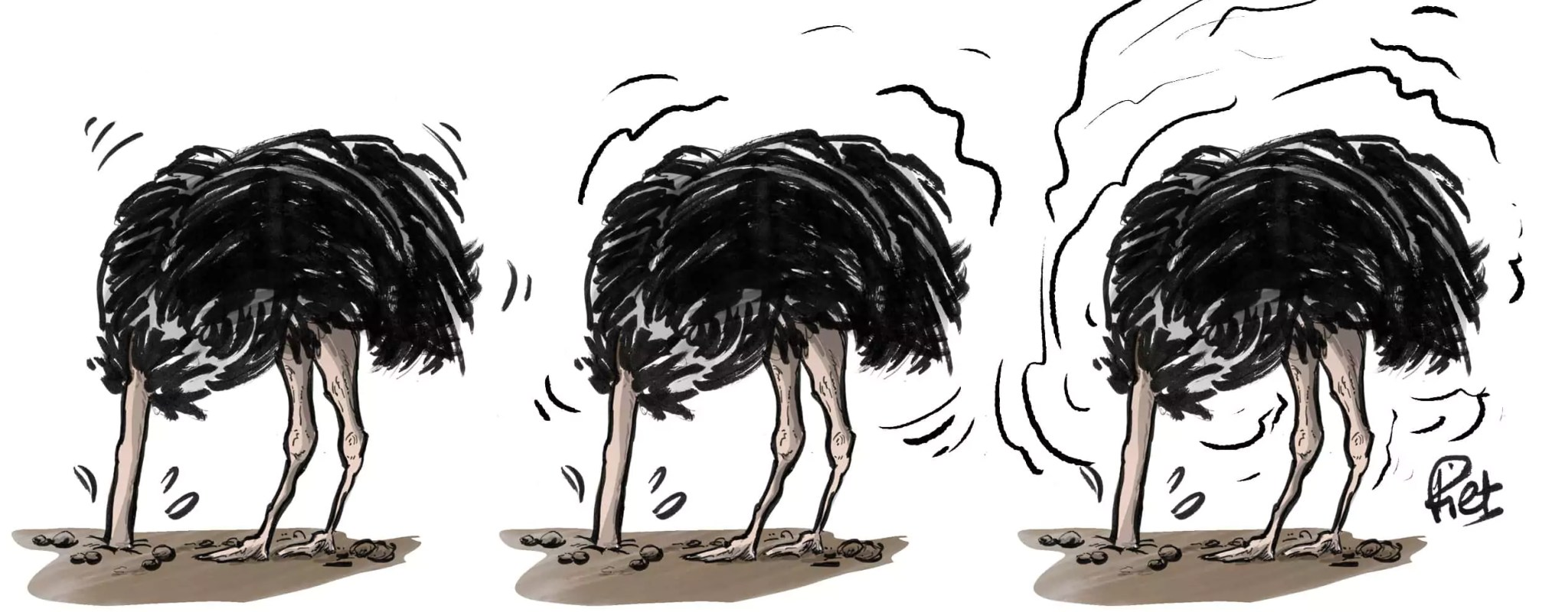 L'autruche, cette nouvelle mascotte alsacienne