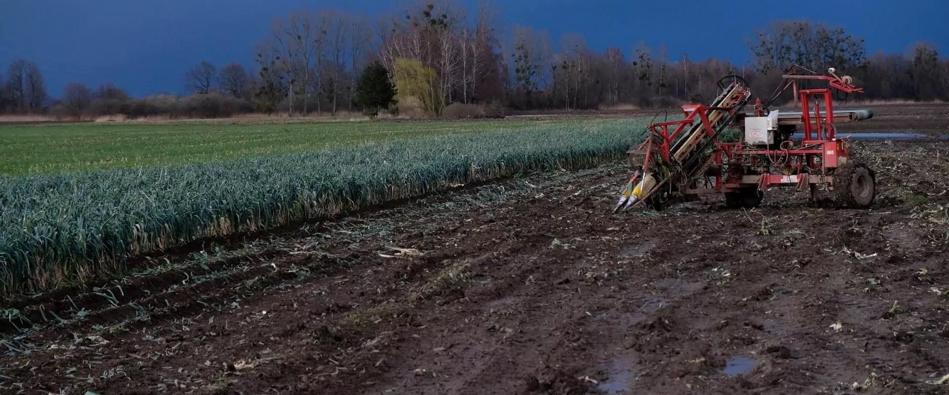 «Avec Europa Vallée, milieux naturels et terres agricoles d'Alsace vendus au plus offrant»