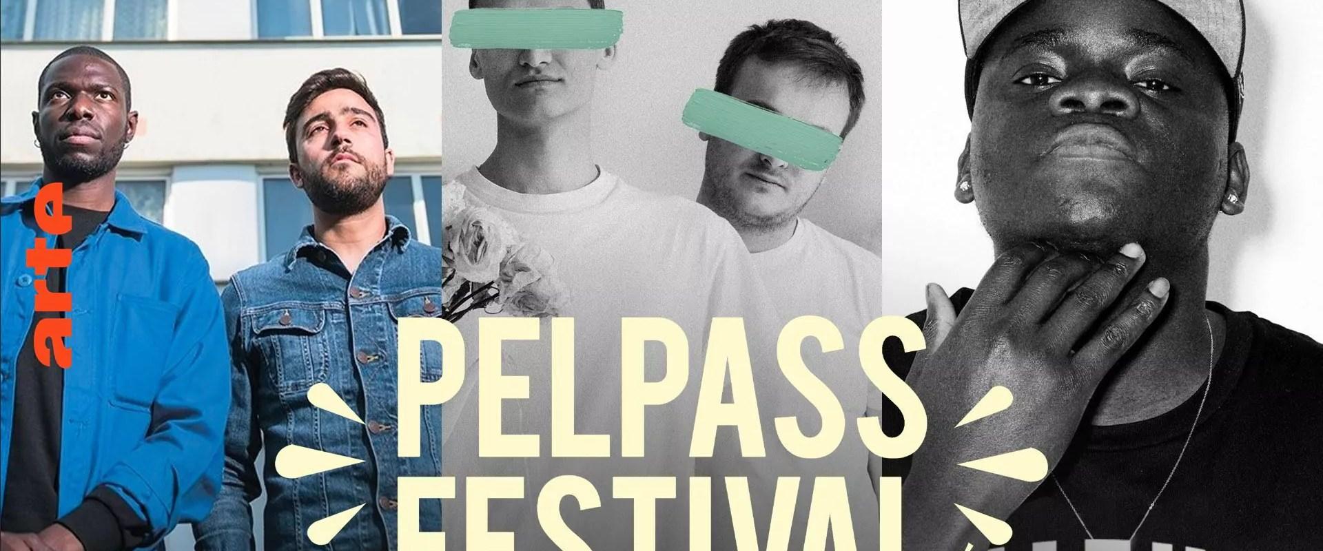 Les concerts de YN, Glauque et Benjamin Epps au Pelpass Festival