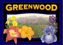 Greenwood Daylilies