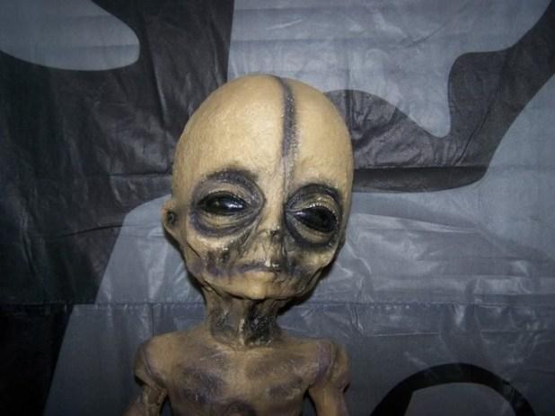 alien-fake