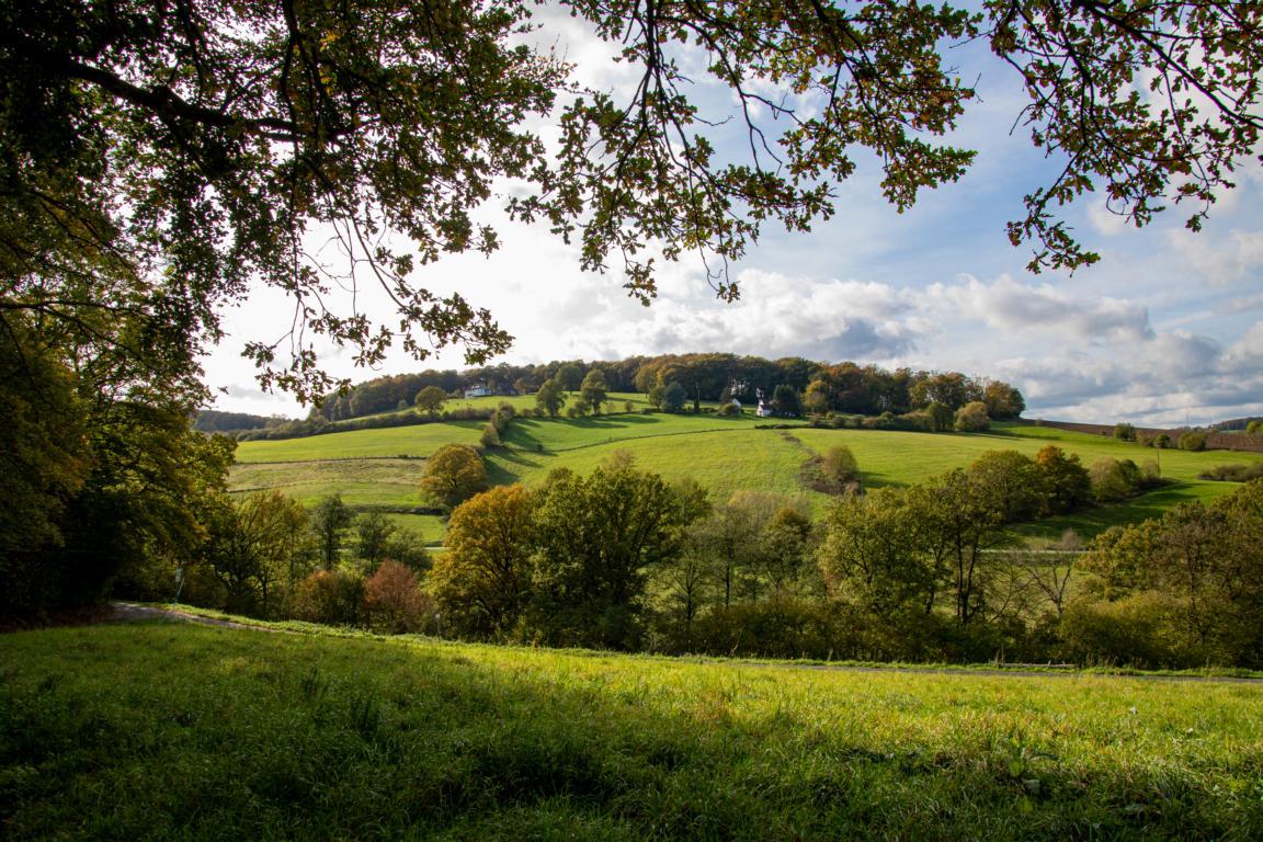 Wandern im Ruhrgebiet – Eine schöne Herbsttour durch die Elfringhauser Schweiz