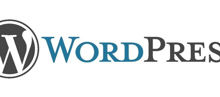 Introduction From Basic: What is WordPress?