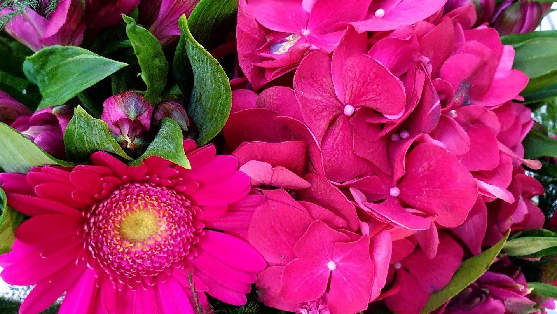 Knalroze bloemen en dingen