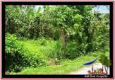 TANAH di TABANAN JUAL MURAH 150 Are View Gunung, sawah