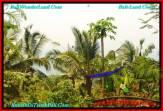 TANAH di TABANAN JUAL MURAH 86 Are view laut, hutan lindung, kebun