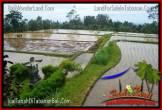 JUAL TANAH MURAH di TABANAN 8,700 m2 di Tabanan Penebel