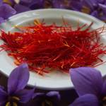 Manfaat Bunga Saffron, Rempah Termahal di Dunia