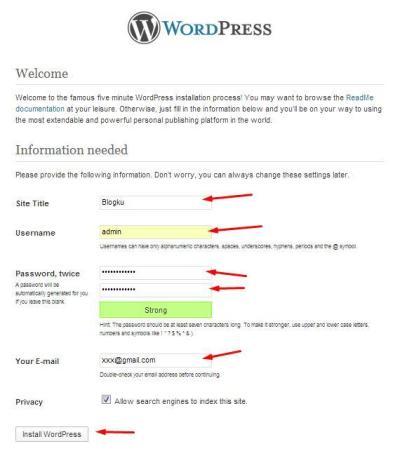 12-isian-informasi-wordpress-install
