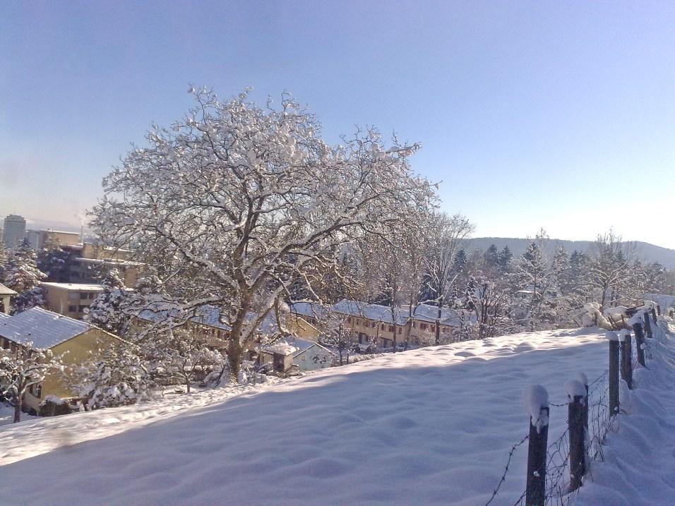 Schnee_1