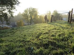 Herbstmorgen auf der Rumpelhalde