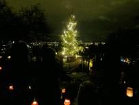 Unser Weihnachtsbaum auf der Rumpelhalde
