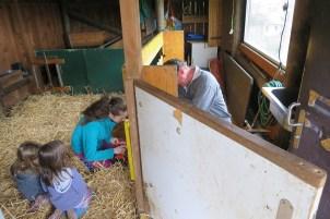Selina hat mit ihren Vater die neue Heuraufe gebaut