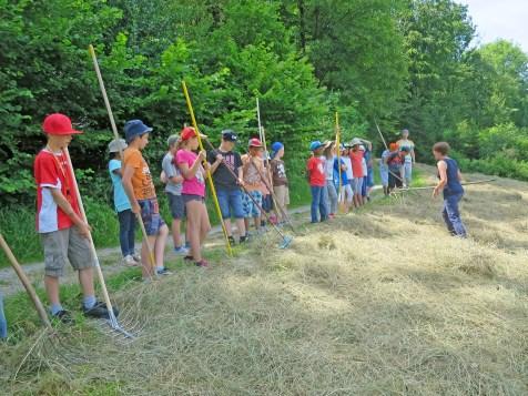 Freitagnachmittag half eine 4. Klasse der Schule Kügeliloo tatkräftig mit