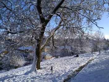 Herbst17_Winter18_Rumpelhalde (1 von 2)
