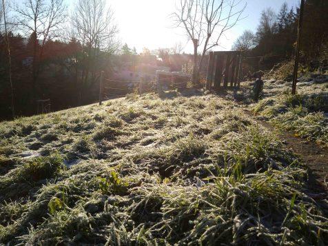 Herbst17_Winter18_Rumpelhalde (1 von 6)