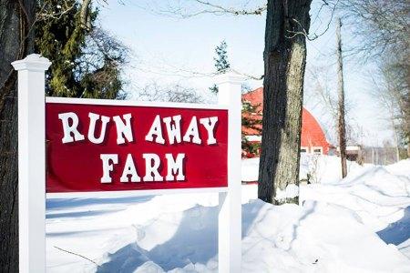 Run Away Farm