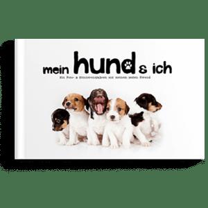 Haustierserie_Mein Hund & Ich