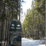 Hiking: Grassi Lakes