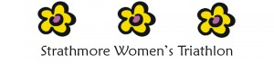 best-swt-logo2-300x71