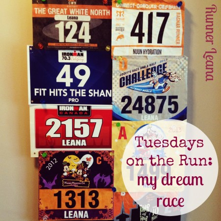 TOTR My Dream Race