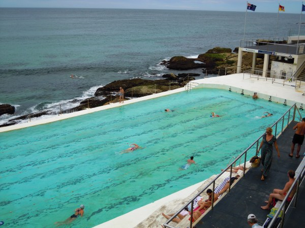 swimming at the Bondi Iceberg Club was a pretty awesome experience too