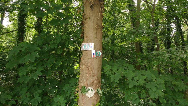 balisage parcours trail permanents d'Amay