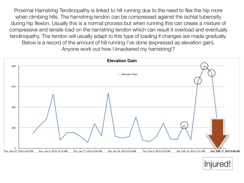 Proximal hamstring tendinopathy reflection on rehab runningphysio not content with all those hills i compounded the problem by running 8 miles with a heavy backpack then 10 the next day at tempo pace pooptronica