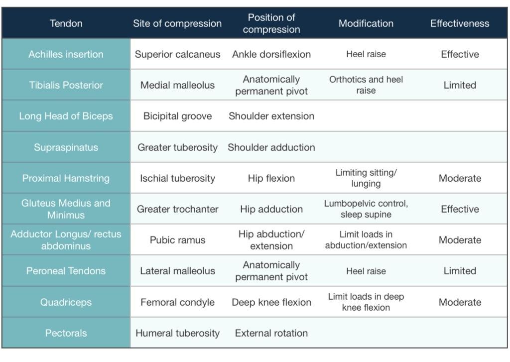 High Hamstring Tendinopathy Rehab Protocol: Triathlon Forum
