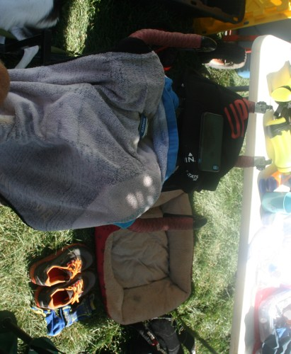 I can't get no satisfaction: Labor Pain 12 Hour Endurance Trail Run Race Report