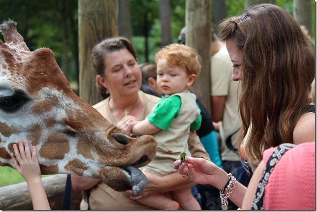 Zoo 169
