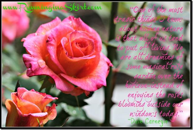 pinkpin